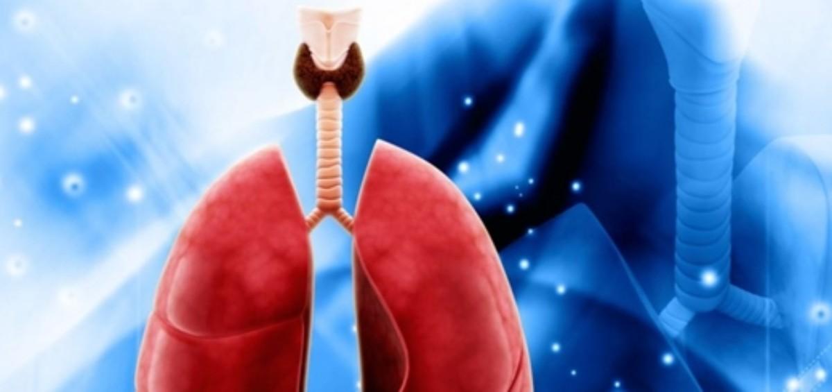 Trachea1 890x3811 1200x565 - Stampanti 3D per riparare una trachea danneggiata
