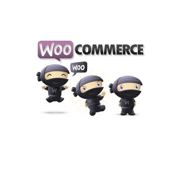 woocommerce internal server error 1 - E-commerce