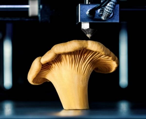 Fungo 3D 600x490 - Stampanti 3D per il cibo del futuro: come funzionano e cosa possono fare